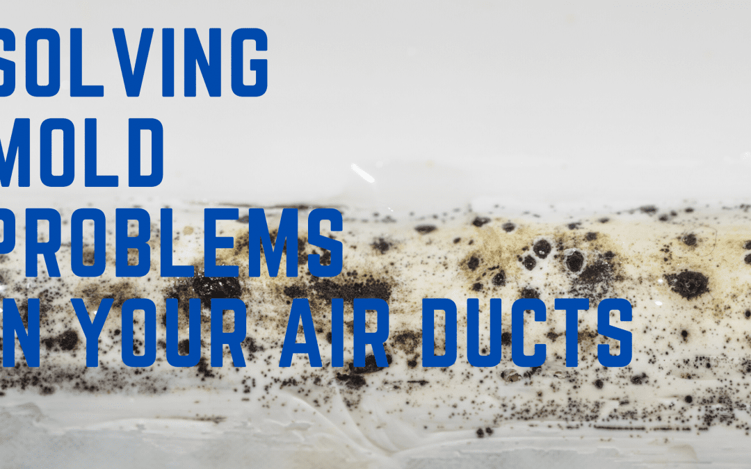Solving Mold Problems in Your Air Ducts